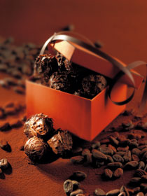 Bouchées Gourmandes - Chocolats Artisal