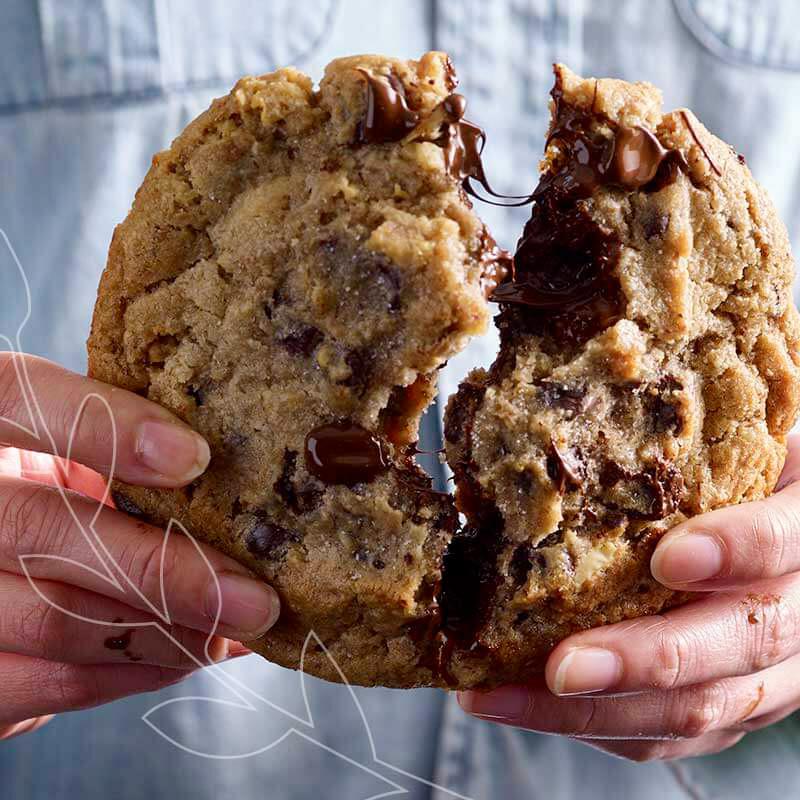 THE Cookie, 2 millions de pièces vendues en 2020